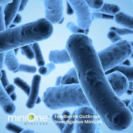 Foodborne Outbreak Investigation MiniLab