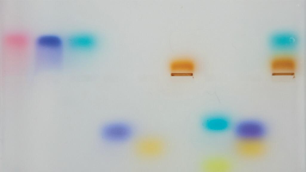 Colorful Dye Electrophoresis MiniLab