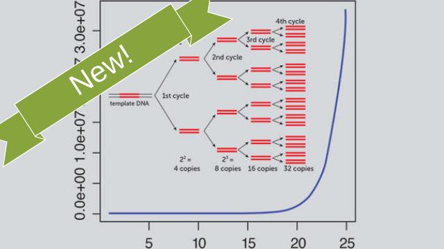 DNA Fingerprinting MiniLab