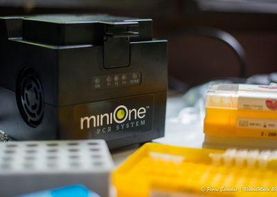 MiniOne - TxEx Brunei 2019-10-min