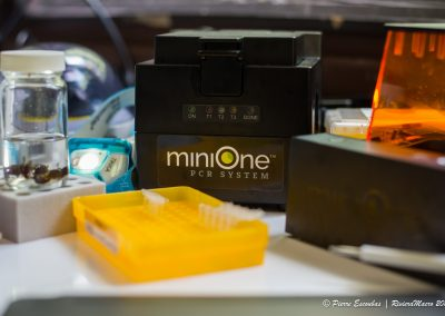 MiniOne - TxEx Brunei 2019-15-min